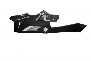 Carbon Bugspoiler für BMW S1000R 2014-