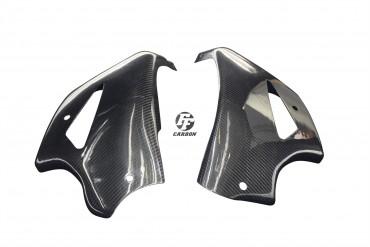 Carbon Bugspoiler für Honda CB 1000R 2008-2017