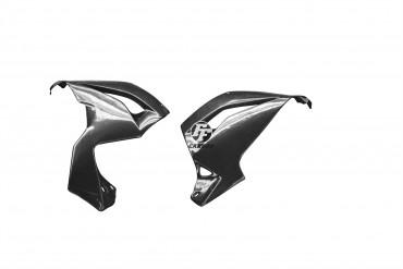 Carbon Bugspoiler für Kawasaki ZX6R 2013-