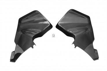 Carbon Cockpitverkleidung Seitenteile für Kawasaki ZX-6R 2005-2006