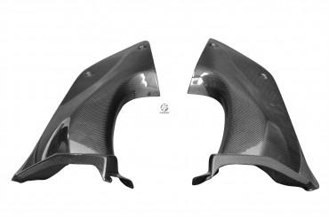 Carbon Cockpitverkleidung Seitenteile für Kawasaki ZZR 1400 / ZX-14R 2006-2011