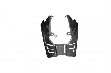 Carbon Hitzeschutz für Triumph Daytona 675 2006-2012