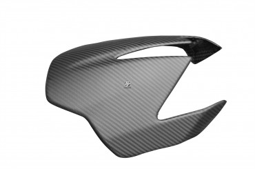 Carbon Frontverkleidung für Aprilia DorsoDuro 750