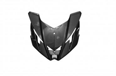 Carbon Frontverkleidung für Aprilia Tuono V4