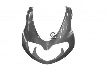 Carbon Frontverkleidung für Suzuki TL 1000 R