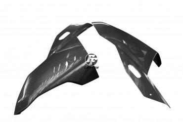 Carbon Frontverkleidung Seitenteile für BMW S 1000 RR 2019-2020 / M 1000 RR 2021-