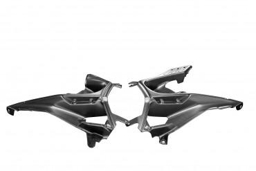 Carbon Frontverkleidung Seitenteile für Ducati Streetfighter V4 2020-