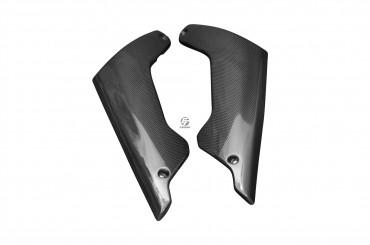 Carbon Gabelverkleidung für BMW K1200R Carbon+Fiberglas Leinwand Glossy Carbon+Fiberglas | Leinwand | Glossy