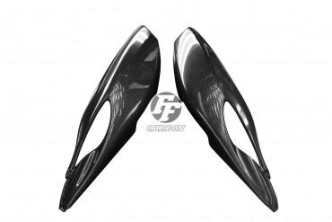 Carbon Heck Seitenverkleidung für BMW R 1100 S / Boxer Cup