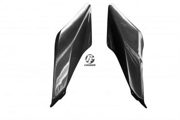 Carbon Heck Seitenverkleidung für BMW R 1200 RS 2015-