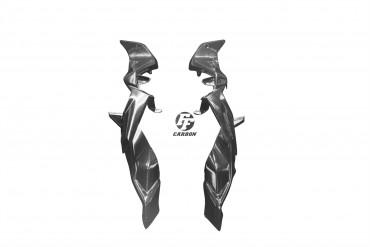 Carbon Heck Seitenverkleidung für BMW S1000XR