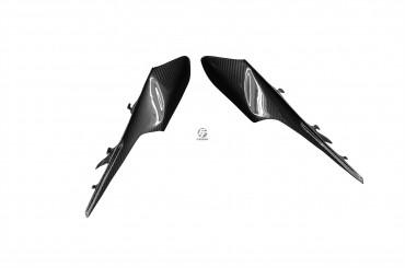 Carbon Heck Seitenverkleidung für Kawasaki ZX-10R 2011-2015