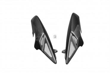 Carbon Heck Seitenverkleidung für Triumph Speed Triple 1050 2008-2010