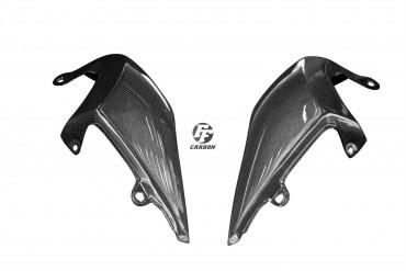 Carbon Heck Seitenverkleidung für Triumph Speed Triple 2016-