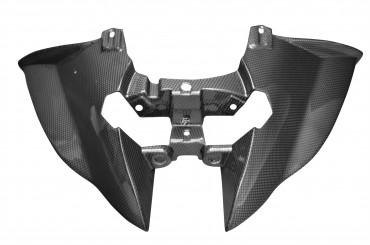 Carbon Heckverkleidung für BMW K1200S / K1300S Carbon+Fiberglas Leinwand Glossy Carbon+Fiberglas | Leinwand | Glossy