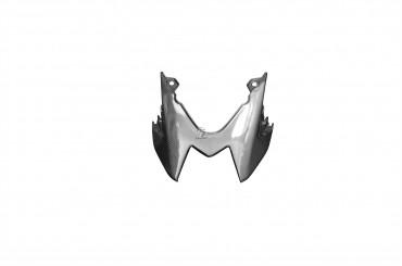 Carbon Heckverkleidung für BMW S1000R 2014