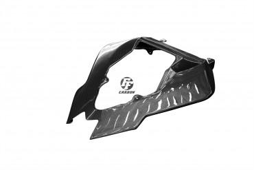 Carbon Heckverkleidung für BMW S1000RR 2010-2012