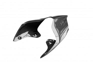 Carbon Heckverkleidung für Ducati Panigale V4