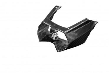 Carbon Heckverkleidung für Kawasaki Ninja H2 SX/SE 2018-