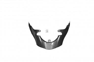 Carbon Heckverkleidung für Triumph Speed Triple 2011-2015