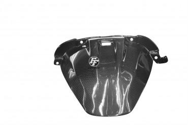 Carbon hinteres Schutzblech für BMW S1000XR