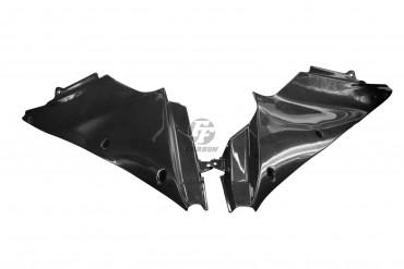 Carbon Innenverkleidung für Kawasaki ZZR 1400 / ZX-14R 2011-2015