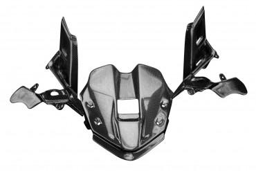 Carbon Instrumenten Abdeckung für Ducati Panigale V4 / V4S / V4R