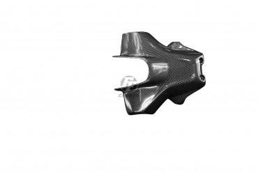 Carbon Kennzeichenhalter für Ducati Hypermotard 950 2019-2020