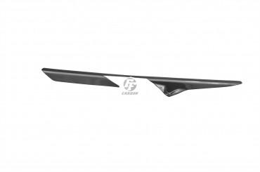 Carbon Kettenschutz für Yamaha YZF-R 125