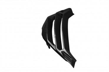 Carbon Kühlerverkleidung für BMW S1000R 2014