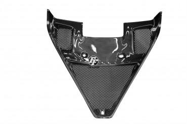 Carbon Kühlerverkleidung für Ducati 1098 1198