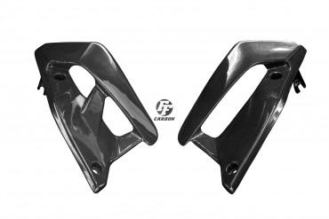 Carbon Kühlerverkleidung für Ducati Monster 797