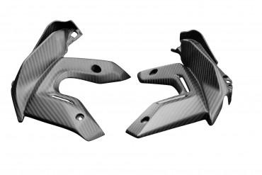 Carbon Kühlerverkleidung für Kawasaki Z650 2020-