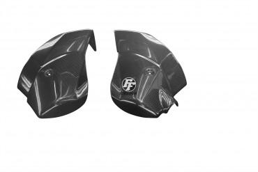 Carbon Kühlerverkleidung für Triumph Tiger 800