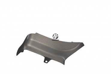 Carbon Motorabdeckung für Ducati Panigale 899 / 959 / 1199 / 1299