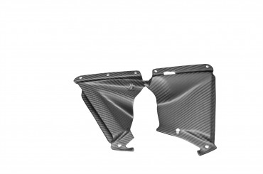 Carbon Motorabdeckung für Aprilia RSV4 2009-2014