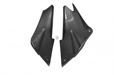 Carbon Obere Seitenverkleidung für Kawasaki ZX-6R 2005-2006