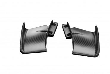 Carbon Obere Winglets für Ducati Streetfighter V4 2020-