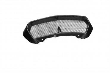 Carbon Ölkühlerabdeckung für BMW K1300 R Carbon+Fiberglas Leinwand Glossy Carbon+Fiberglas | Leinwand | Glossy