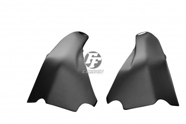 Carbon Rahmenschutz für Ducati Panigale V4