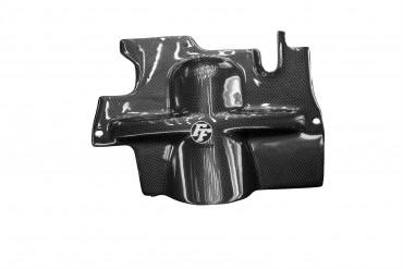 Carbon Rahmenschutz für Triumph Sprint ST 1050 05- 09