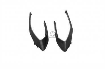 Carbon Rücklichtverkleidung für MV Agusta Brutale 800 Dragster Carbon+Fiberglas Leinwand Glossy Carbon+Fiberglas | Leinwand | Glossy