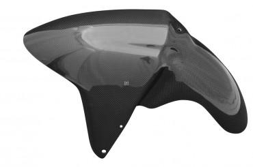 Carbon Schutzblech für BMW R1100S/R