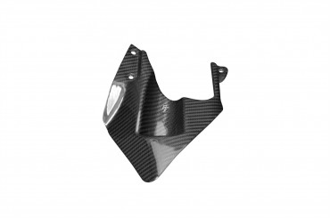 Carbon hinteres Schutzblech für Ducati 1098 / 1198 / 848