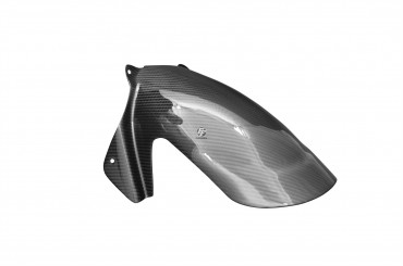 Carbon hinteres Schutzblech für Ducati 749 / 999 2003-2004