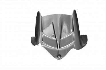 Carbon hinteres Schutzblech für Kawasaki ZX-6R 2009-2012