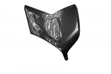 Carbon Schwingenverkleidung für Ducati Panigale V4