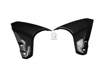 Carbon vorderes Schutzblech Seitenteile für Suzuki B-King 1300 2007-2011