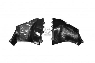 Carbon Seitenverkleidung für Aprilia RSV Mille