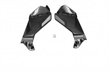 Carbon Tankverkleidung Seitenteile für BMW R1200 GS 2013-2016